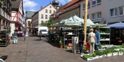 Marktheidenfeld: Die Altstadt